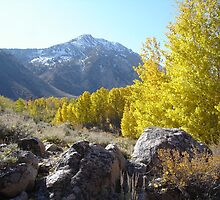 Bishop Creek dressed in fall colors by Glenn Clark