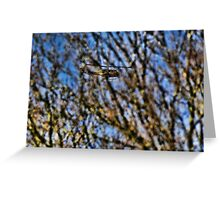 Huey behind the trees Greeting Card