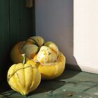 Gourds Galore! by Heather Goodwin
