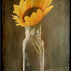 Beauty in a bottle ©  by Dawn M. Becker