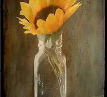 Beauty in a bottle ©  by Dawn M. Becker
