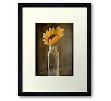 Beauty in a bottle ©  Framed Print