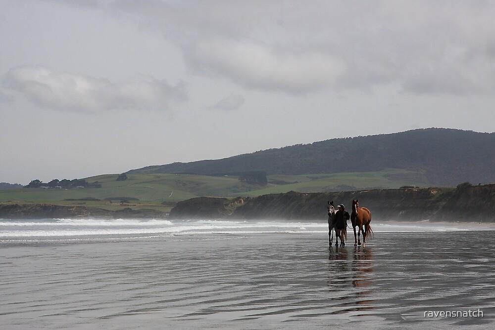 The Horses - Monkey Island - NZ by ravensnatch
