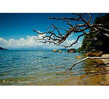 Dunk Island Photographic Print