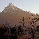 Himalaya Sunrise by AnastasiART