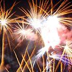 Fireworks by Ashley Wells