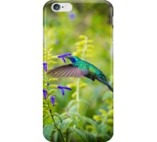 My Secret Garden, Green Violet Eared Hummingbird. iPhone Case/Skin
