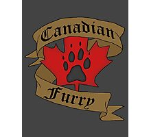 Canadian Furry Photographic Print
