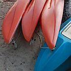 Kayaks by Leon Heyns