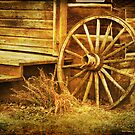Old Wagon Wheel by Terrie Taylor