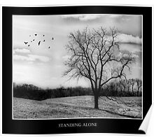 Standing Alone Poster