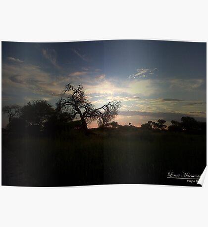 Playful sky's Poster