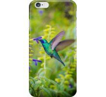 My Secret Garden, Green Violet Eared Hummingbird iPhone Case/Skin