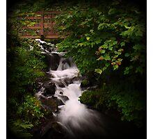 Wahkeena Falls  Photographic Print