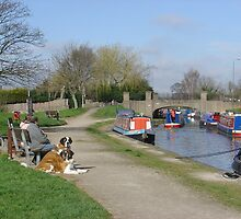 Trent & Mersey Canal, Willington by Rod Johnson