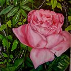 A Rose for Rose by Lynda Earley