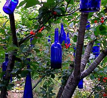When Blue Bottles Fly by Michael May