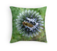 Whizz! Hoverfly on blossom. Throw Pillow