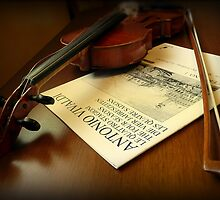 The Broken String by Lucinda Walter