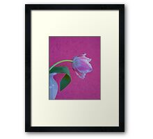 Tulip Lace Framed Print