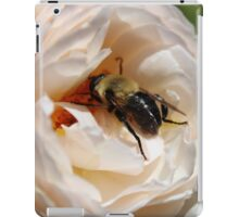 Busy Bee on a Rose iPad Case/Skin