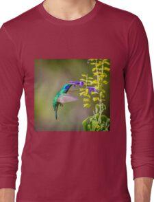 My Secret Garden, Green Violet Eared Hummingbird. Long Sleeve T-Shirt