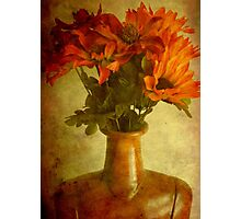 Just a flower display ©  Photographic Print