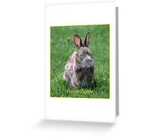 Zeppelin is the Easter Bunny? Greeting Card