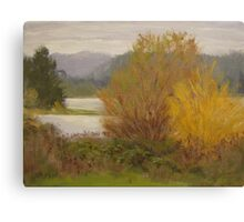 Reservoir Spring Canvas Print