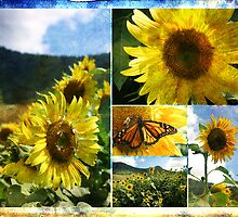 The Bees and the Butterfly by Laura Sykes