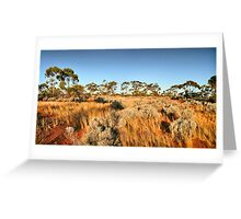 Australian Outback Greeting Card