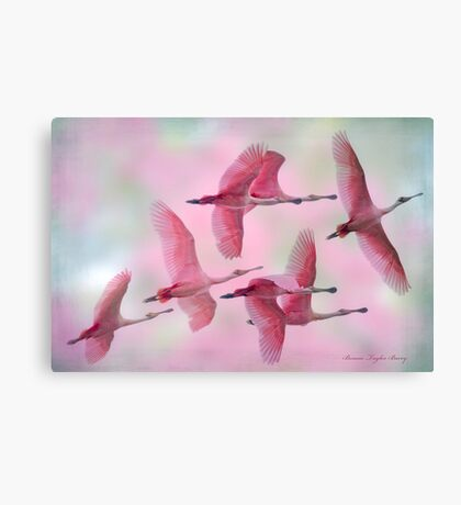 Rosy Skies Canvas Print