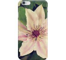 summer flowers - four iPhone Case/Skin