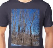 Straight Tall Trees Stretching To The Sky T-Shirt