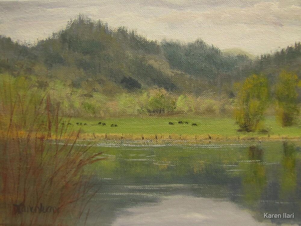 Reservoir 2 by Karen Ilari