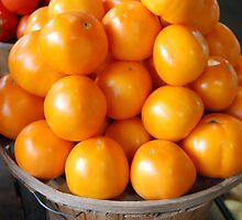 Sunshine Tomatoes by Shannon Smith