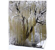 A Bridge, a creek and a willow tree Poster