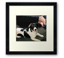 Good Girl Odessa! Framed Print