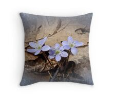 Hepatica Wildflowers - Hepatica nobilis Throw Pillow