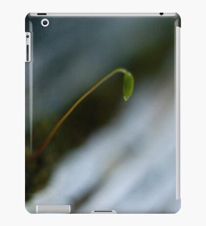 Garage Door #2 iPad Case/Skin