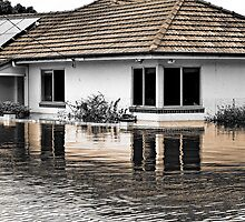 Brisbane Floods 2011 - Inundation - The Neighbours by Neil Ross