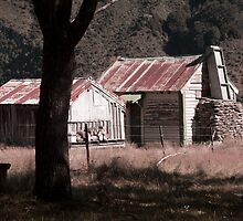 Old Sheperds Hut, Rees Valley by Katy Pryor