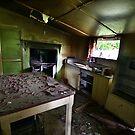 A Farmhouse Forgotten (3) by Reg  Lyons