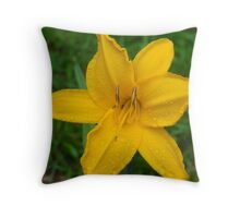 Rainbow Gold Throw Pillow