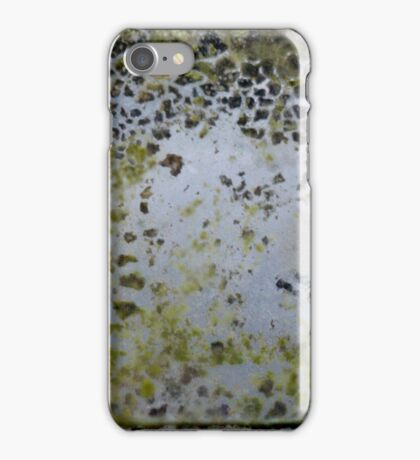 The Greenhouse #4 iPhone Case/Skin