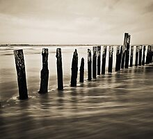 Wooden Poles - Landscape by Leon Ritchie