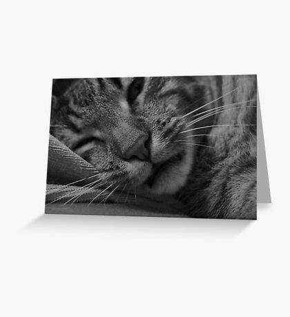 Sleepy Cat Greeting Card