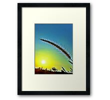 Grass spike with seeds in front of setting sun Framed Print