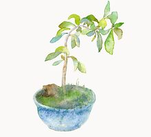 Tiny Bonsai Tree by Lunta