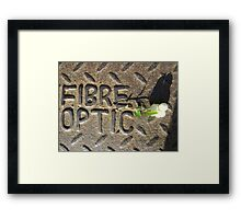 Fibre Optic (mistletoe on metal) Framed Print